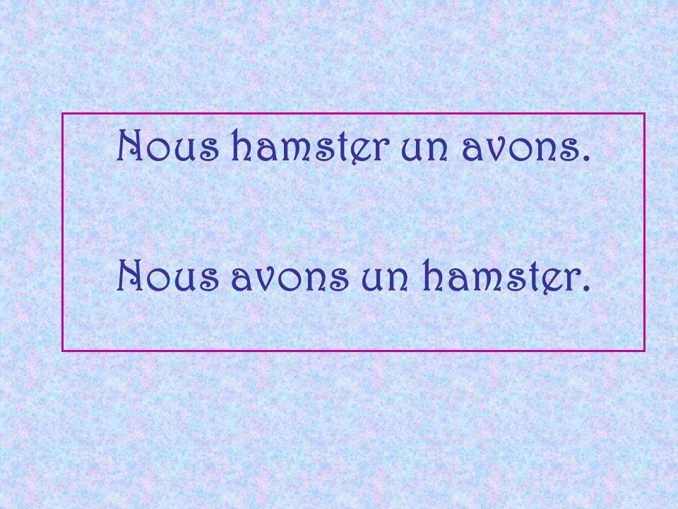 Nous hamster un avons. Nous avons un hamster.