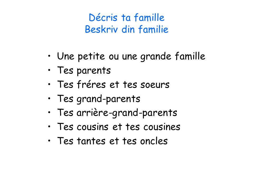 Décris ta famille Beskriv din familie