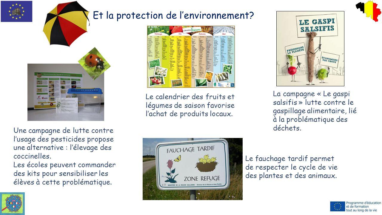 Et la protection de l'environnement