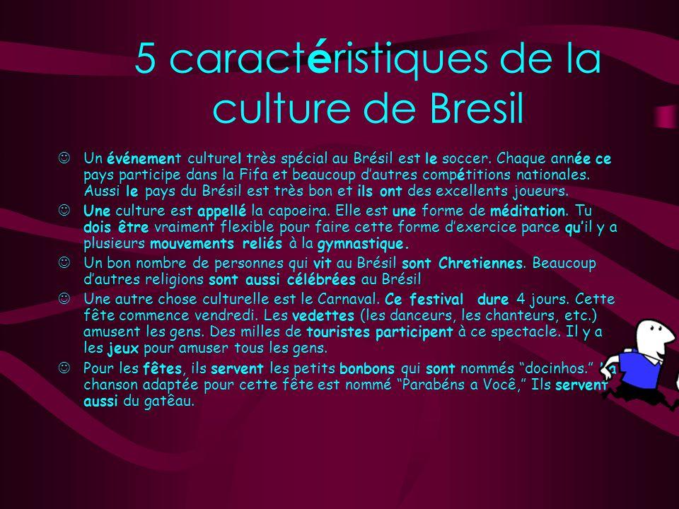 5 caractéristiques de la culture de Bresil