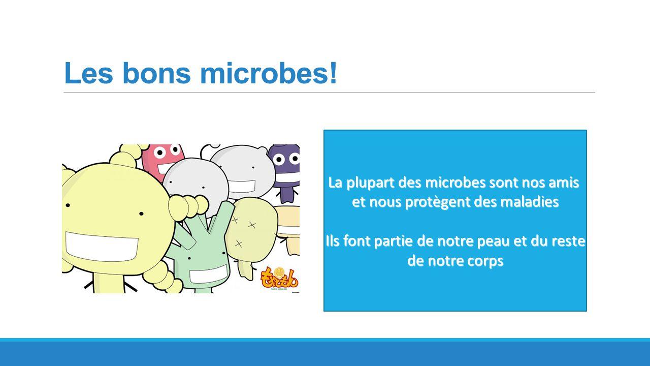 Les bons microbes! La plupart des microbes sont nos amis