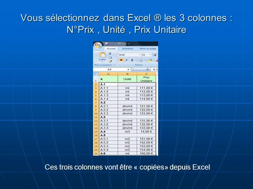 Ces trois colonnes vont être « copiées» depuis Excel