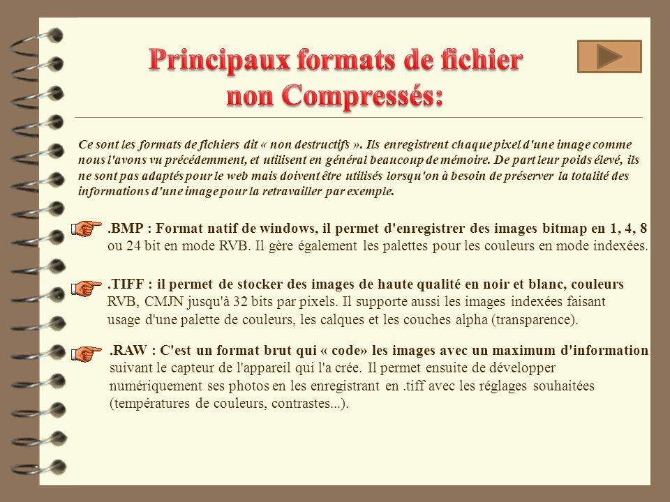 Principaux formats de fichier non Compressés: