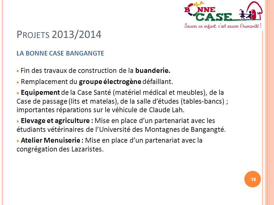 Projets 2013/2014 Remplacement du groupe électrogène défaillant.