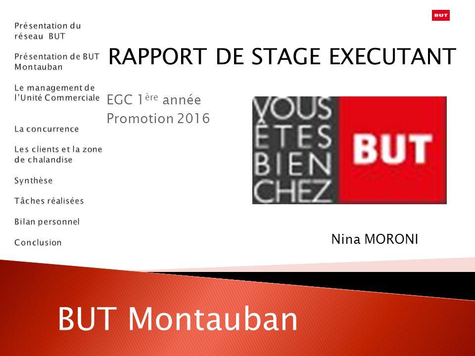 RAPPORT DE STAGE EXECUTANT EGC 1ère année Promotion 2016