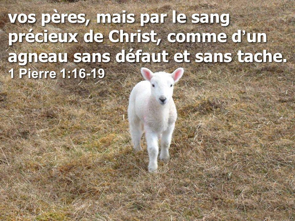 vos pères, mais par le sang précieux de Christ, comme d'un agneau sans défaut et sans tache.
