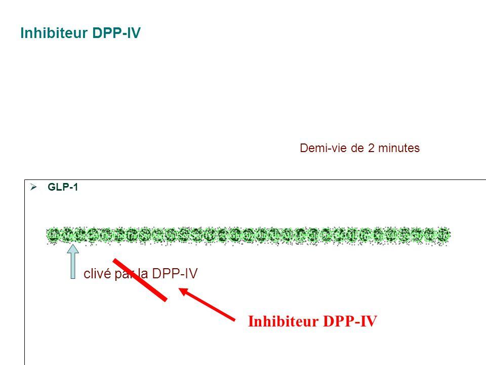 Inhibiteur DPP-IV Inhibiteur DPP-IV clivé par la DPP-IV
