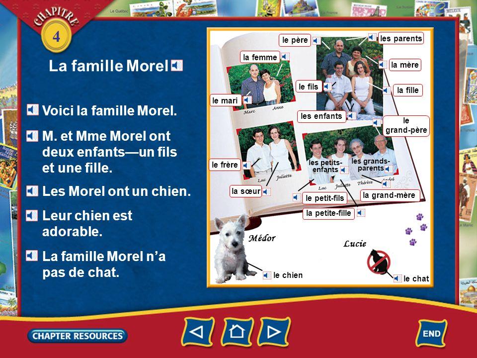 La famille Morel Voici la famille Morel.
