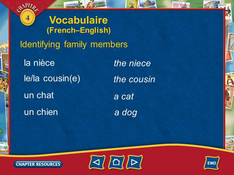 Vocabulaire Identifying family members la nièce the niece