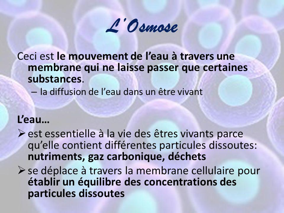 L'Osmose Ceci est le mouvement de l'eau à travers une membrane qui ne laisse passer que certaines substances.