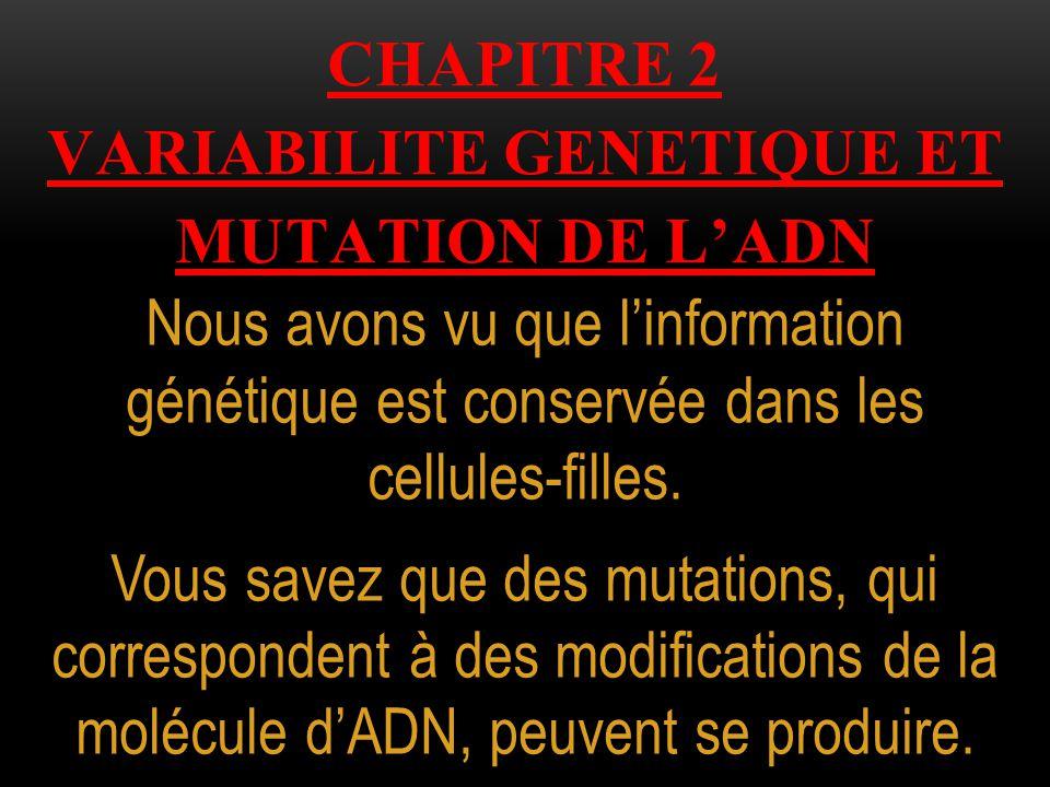 CHAPITRE 2 variabilite genetique et mutation de l'adn