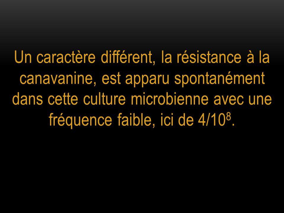 Un caractère différent, la résistance à la canavanine, est apparu spontanément dans cette culture microbienne avec une fréquence faible, ici de 4/108.