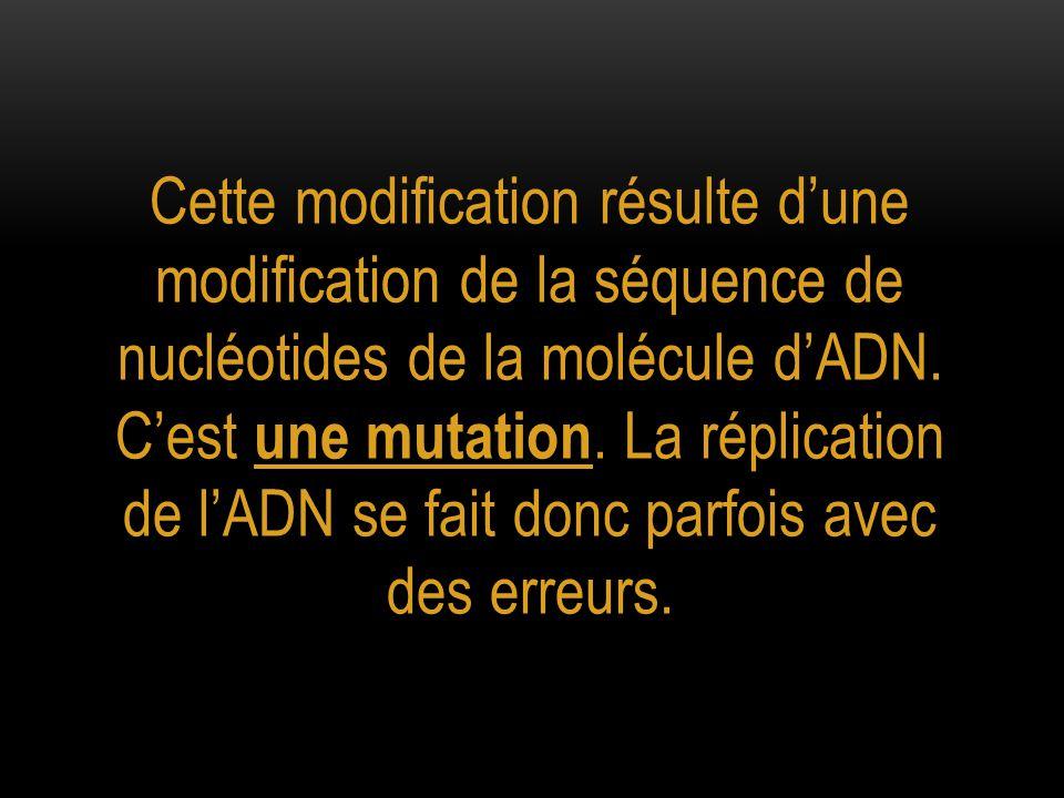 Cette modification résulte d'une modification de la séquence de nucléotides de la molécule d'ADN.