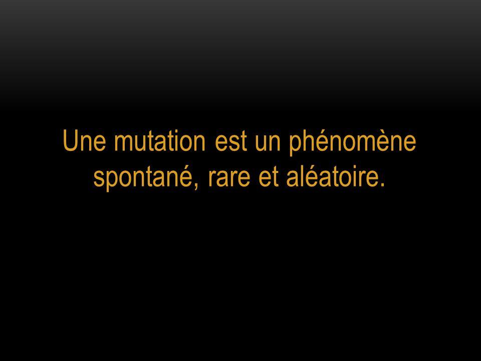 Une mutation est un phénomène spontané, rare et aléatoire.