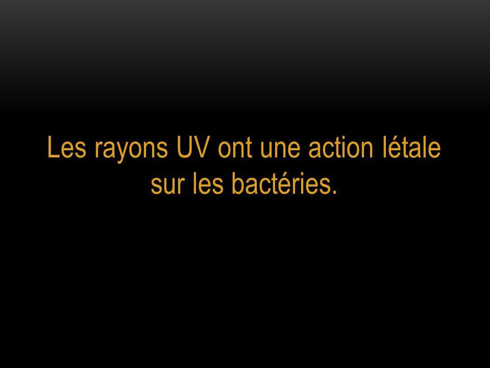 Les rayons UV ont une action létale sur les bactéries.