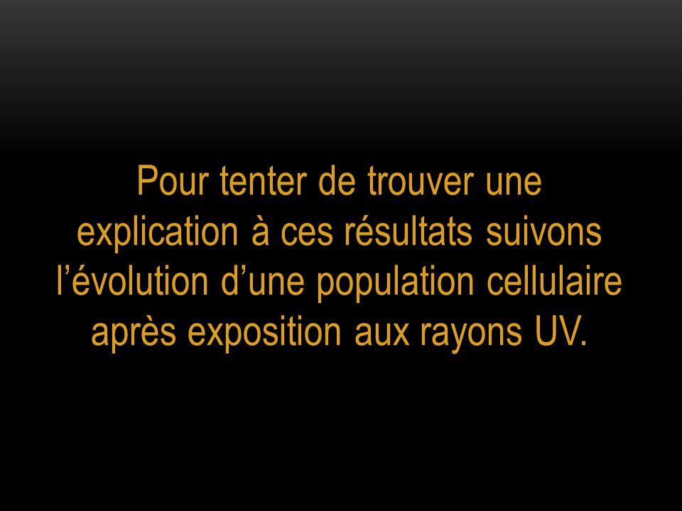 Pour tenter de trouver une explication à ces résultats suivons l'évolution d'une population cellulaire après exposition aux rayons UV.