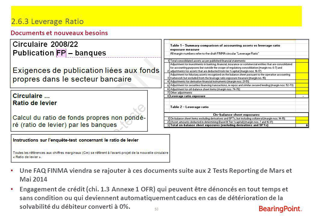2.6.3 Leverage Ratio Documents et nouveaux besoins