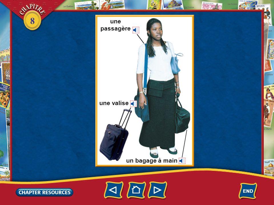 une passagère une valise un bagage à main