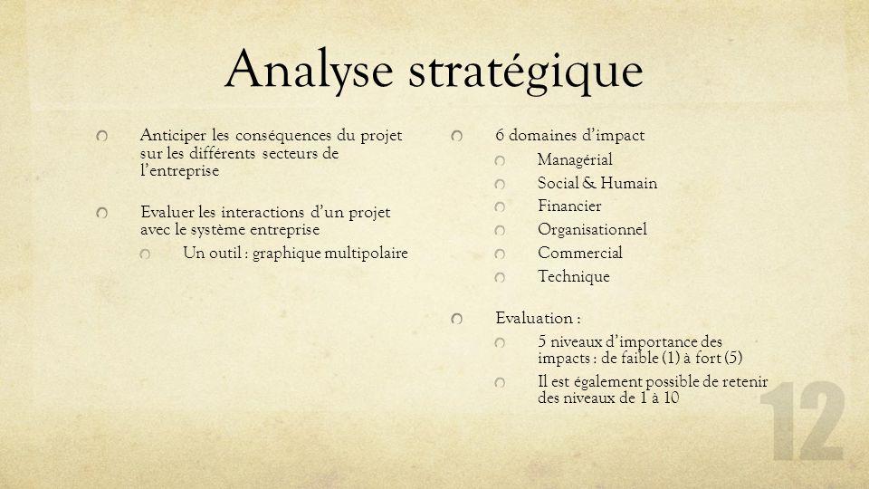 Analyse stratégique Anticiper les conséquences du projet sur les différents secteurs de l'entreprise.