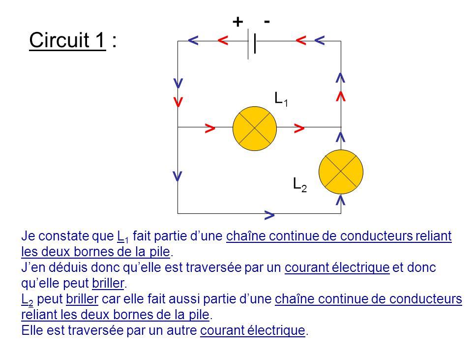 L1 L2. > + - Circuit 1 : Je constate que L1 fait partie d'une chaîne continue de conducteurs reliant les deux bornes de la pile.