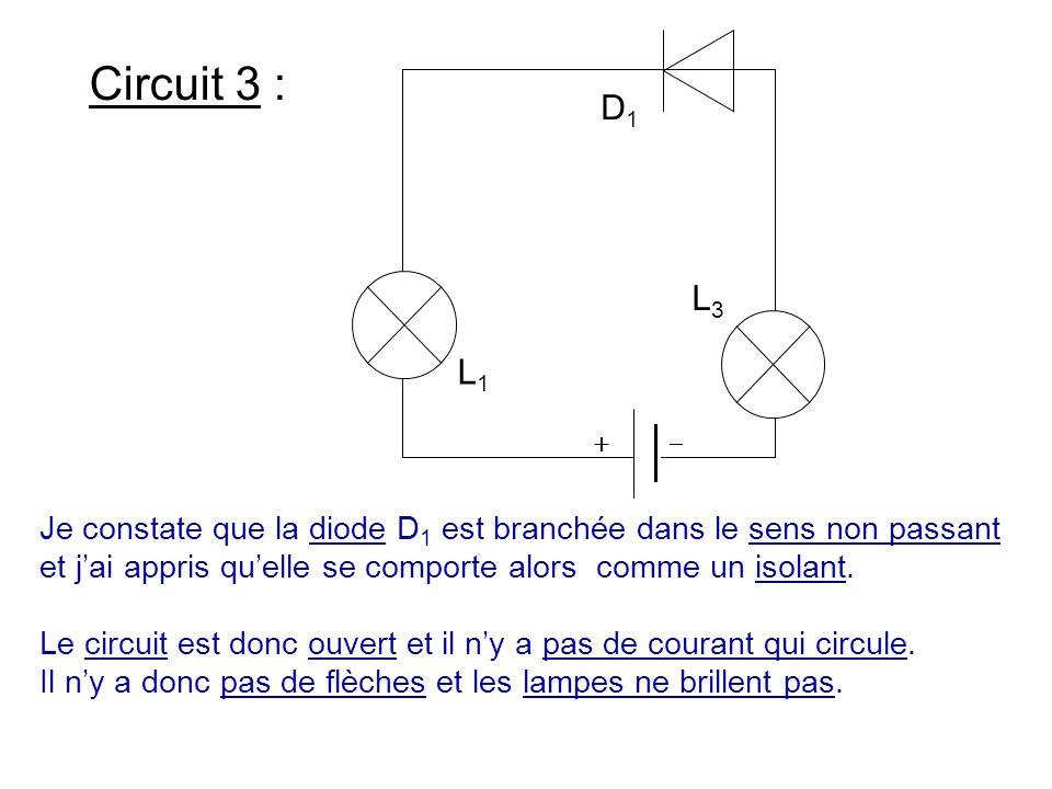 L3 L1. D1.   Circuit 3 :
