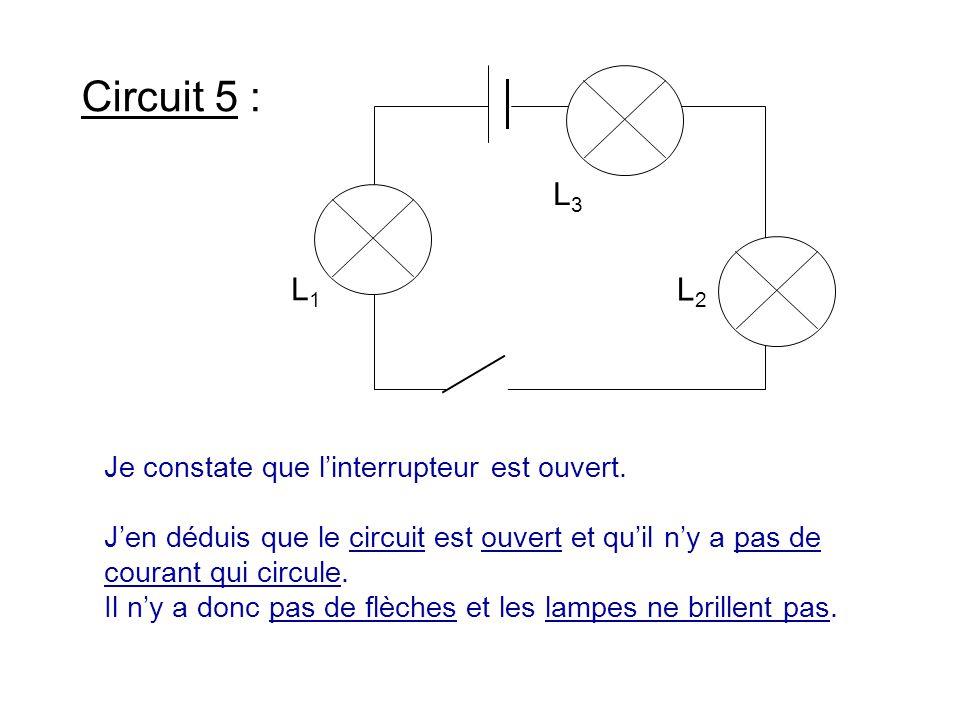 Circuit 5 : L1 L2 L3 Je constate que l'interrupteur est ouvert.