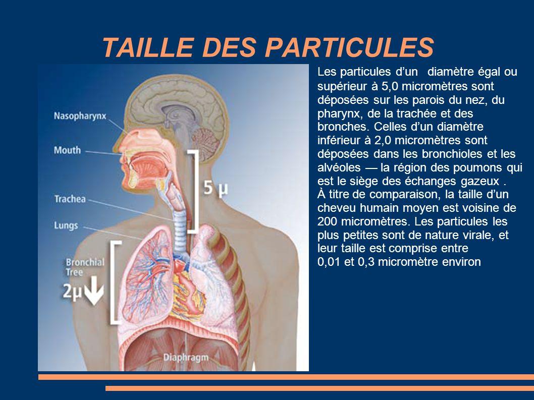 TAILLE DES PARTICULES