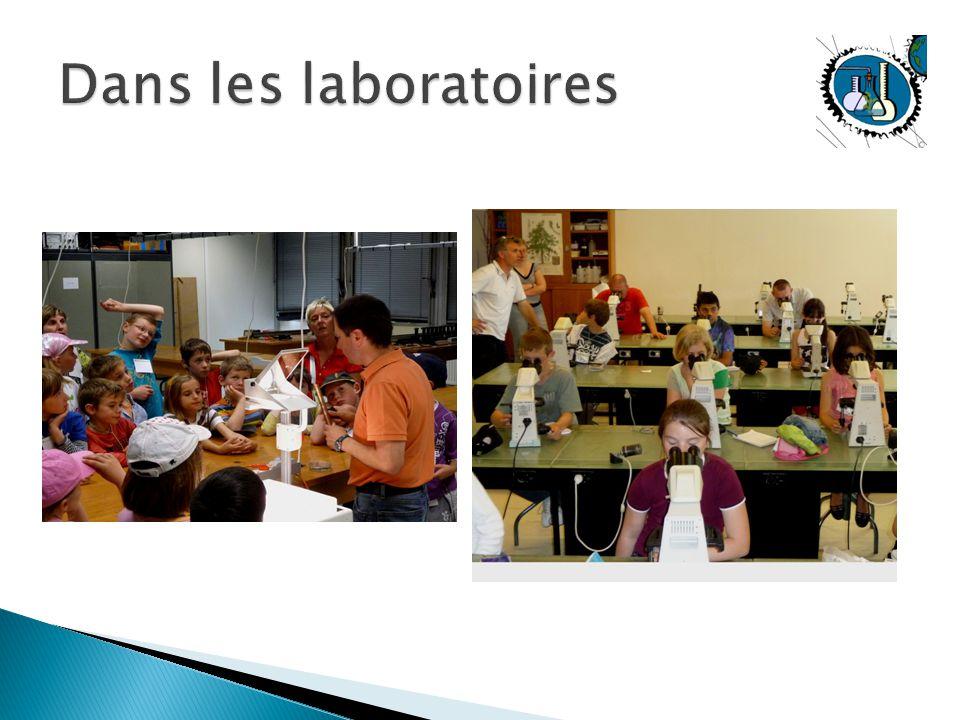Dans les laboratoires