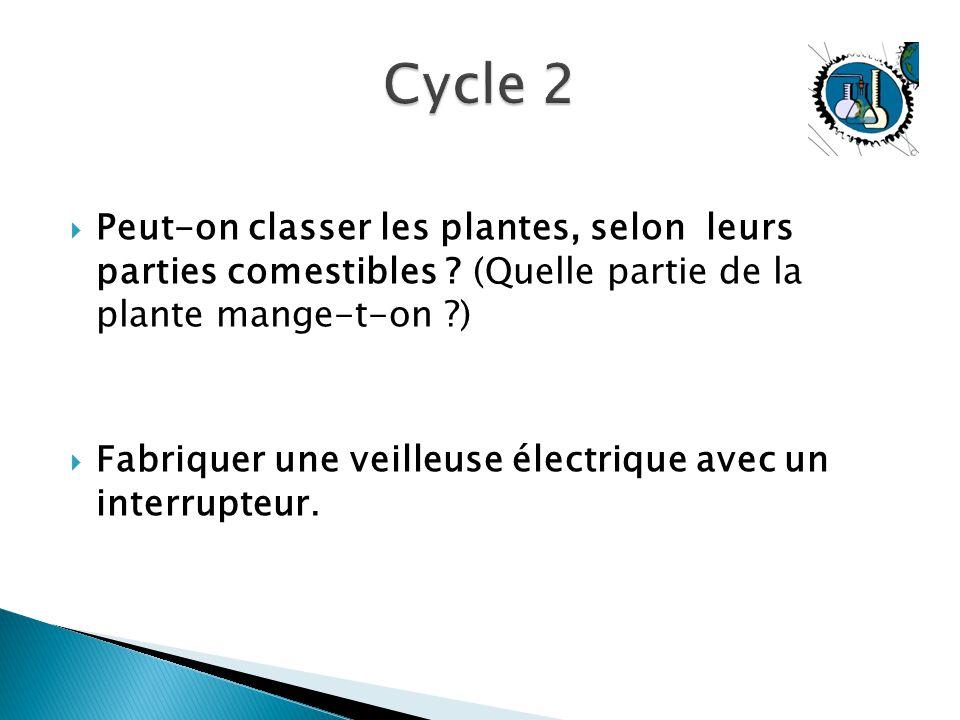 Cycle 2 Peut-on classer les plantes, selon leurs parties comestibles (Quelle partie de la plante mange-t-on )