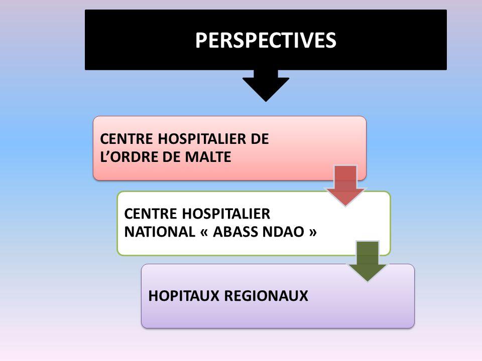 PERSPECTIVES CENTRE HOSPITALIER DE L'ORDRE DE MALTE