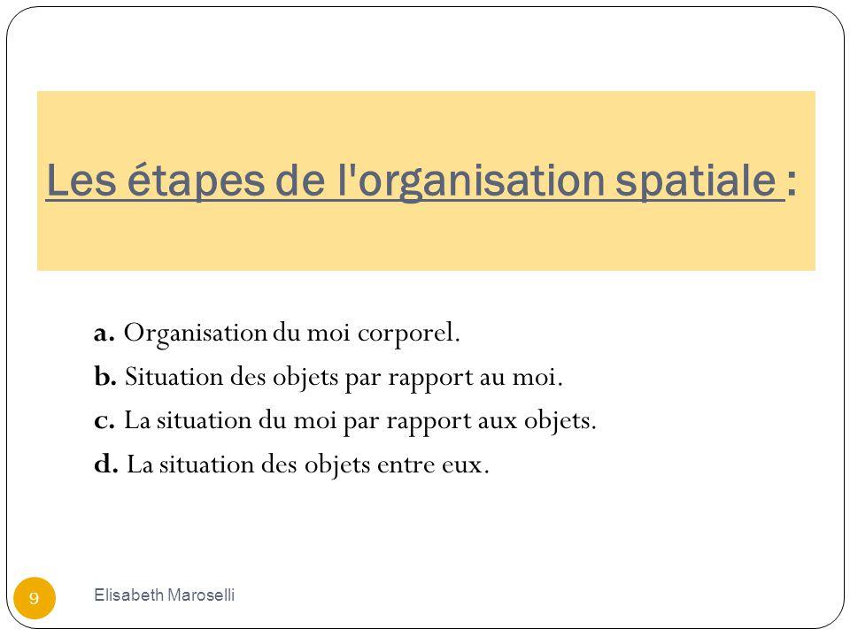 Les étapes de l organisation spatiale :