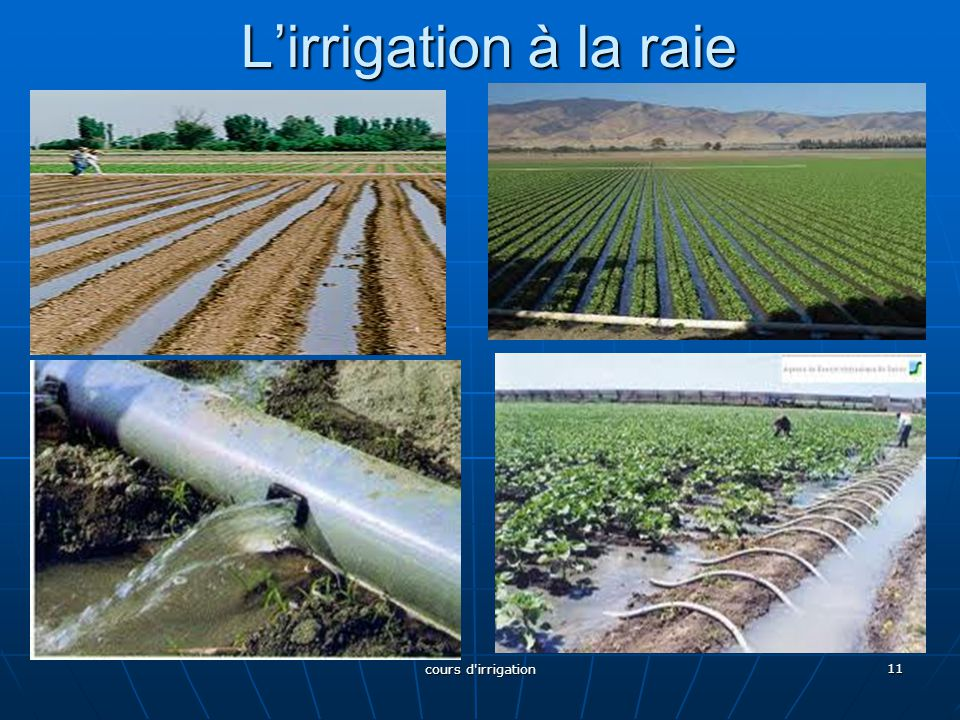 L'irrigation à la raie cours d irrigation