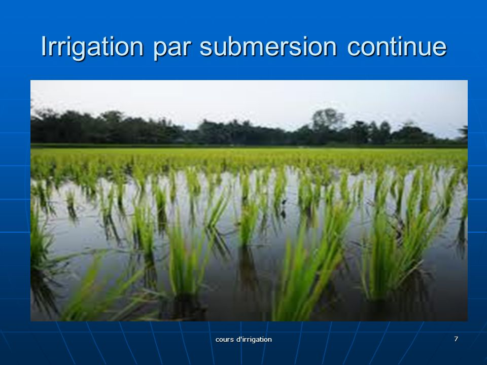 Irrigation par submersion continue