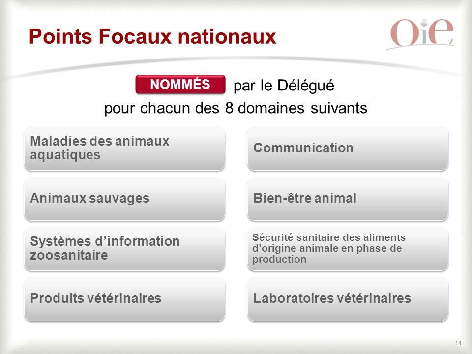 Points Focaux nationaux