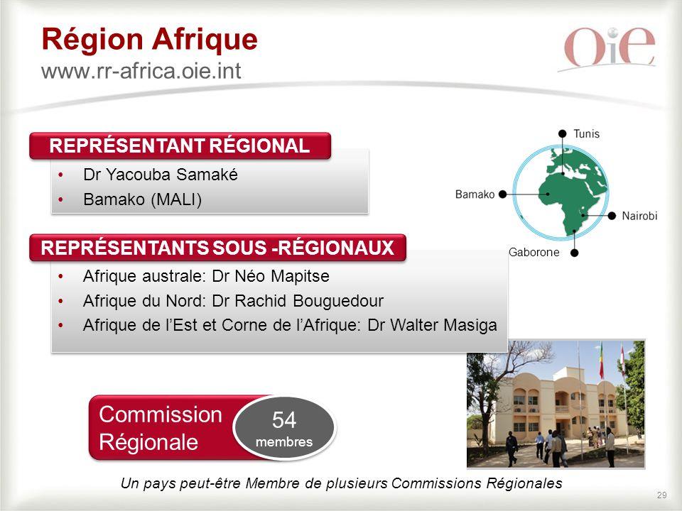 Région Afrique www.rr-africa.oie.int