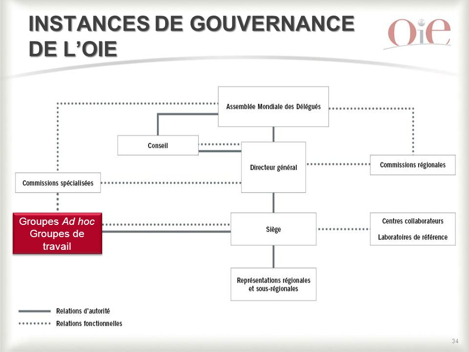 INSTANCES DE GOUVERNANCE DE L'OIE