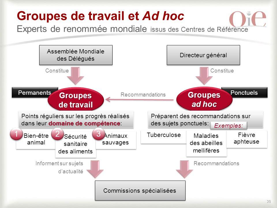 Groupes de travail et Ad hoc Experts de renommée mondiale issus des Centres de Référence