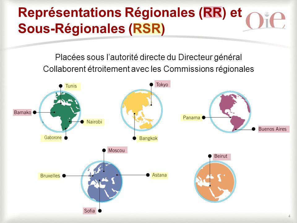 Représentations Régionales (RR) et Sous-Régionales (RSR)