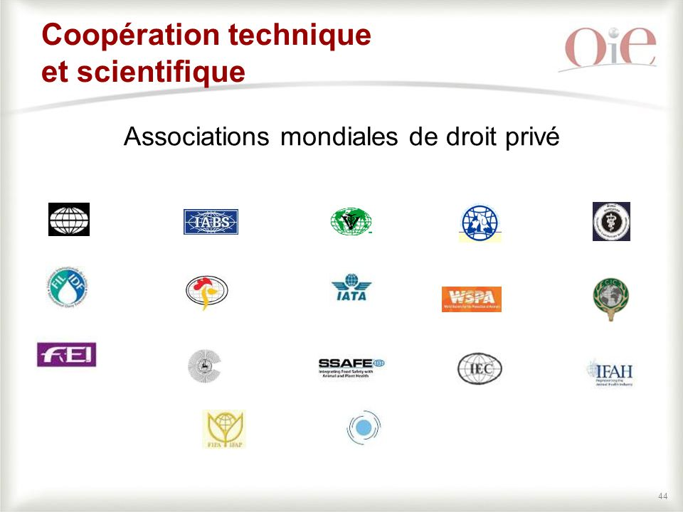 Coopération technique et scientifique