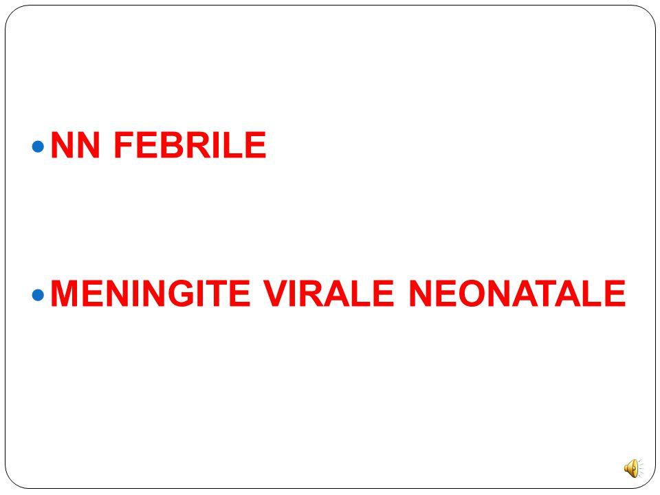 NN FEBRILE MENINGITE VIRALE NEONATALE