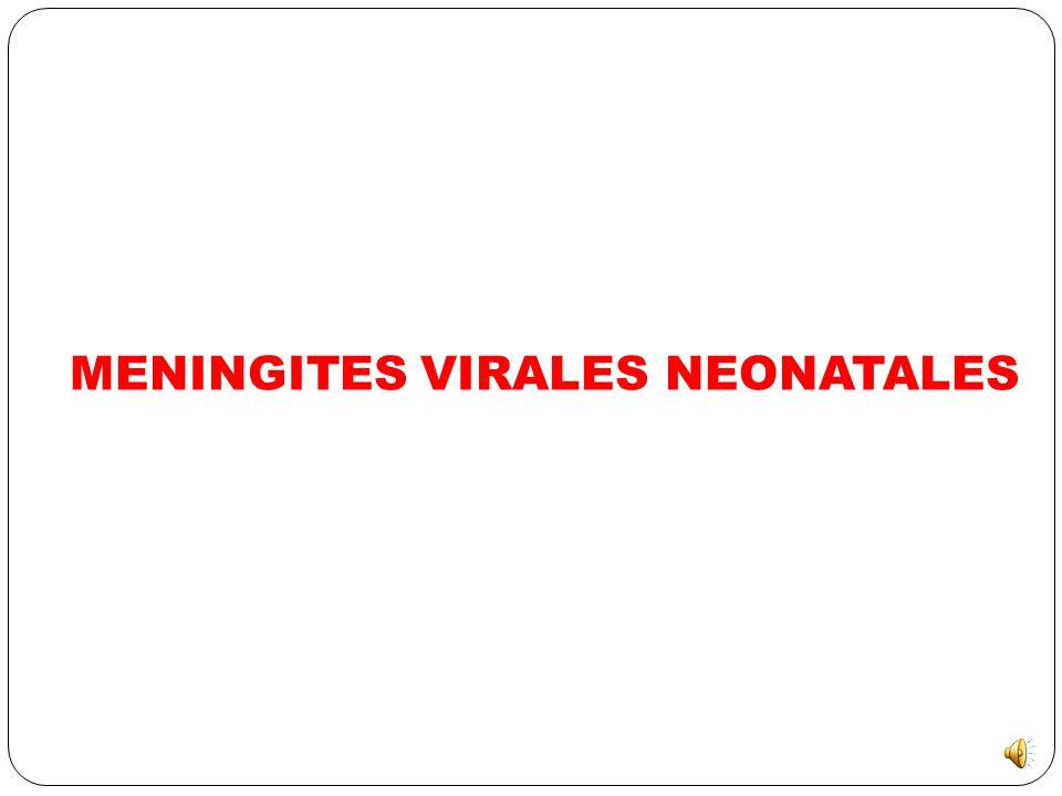 MENINGITES VIRALES NEONATALES