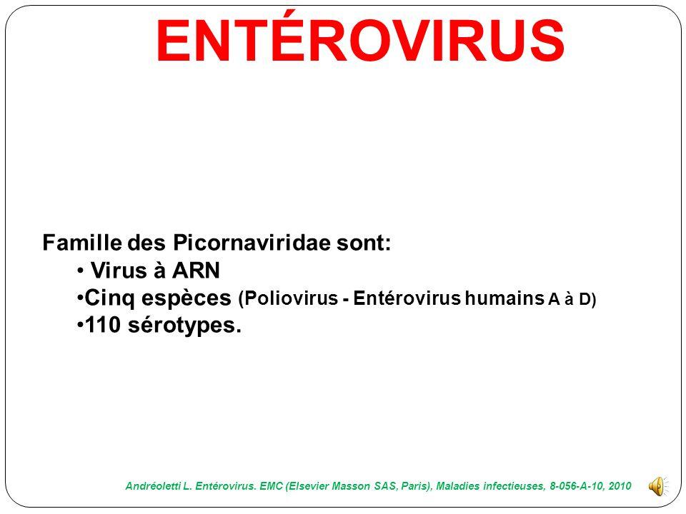 ENTÉROVIRUS Famille des Picornaviridae sont: Virus à ARN