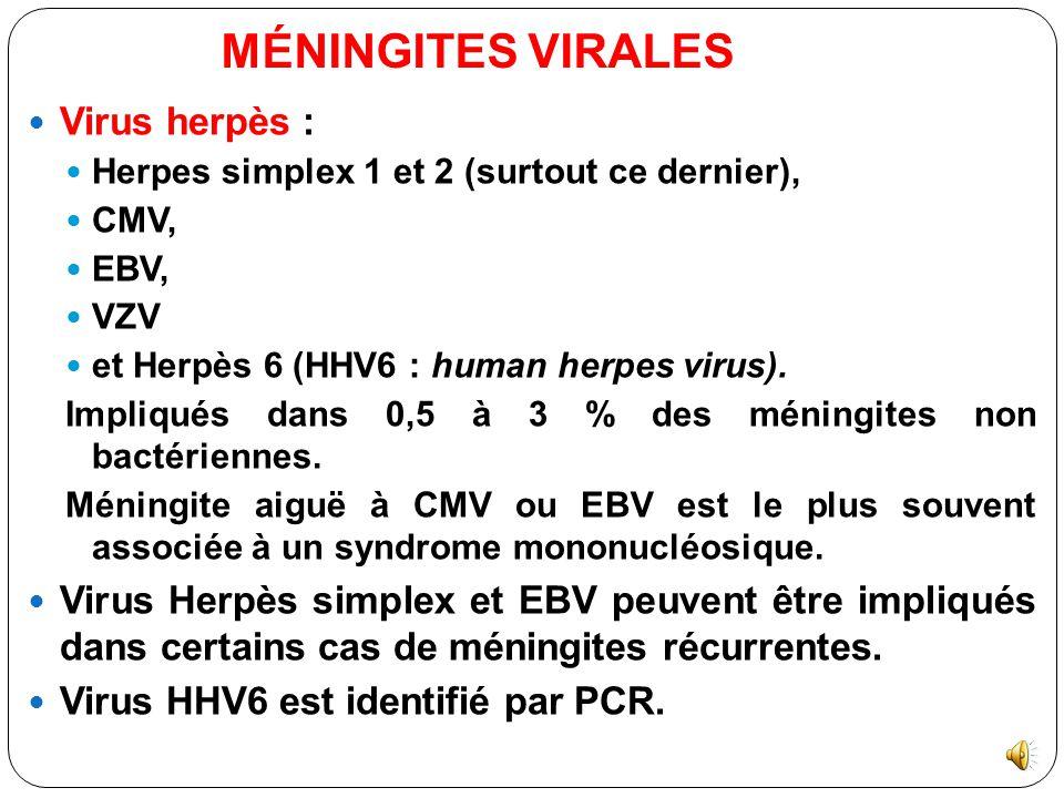 MÉNINGITES VIRALES Virus herpès :