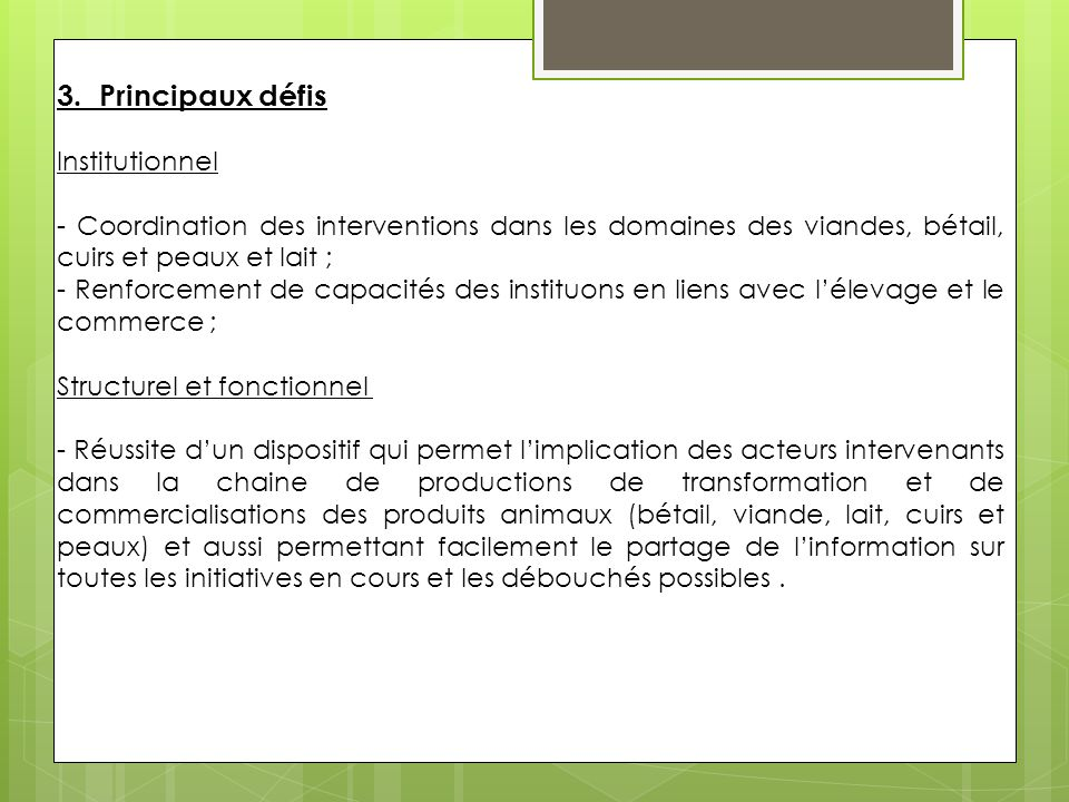 3. Principaux défis Institutionnel