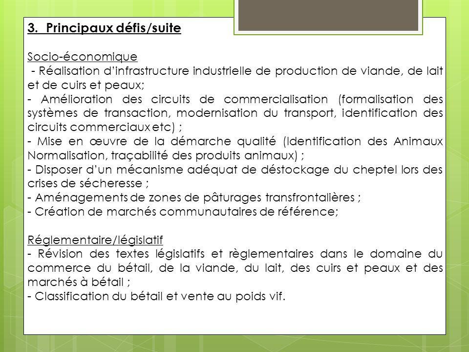 3. Principaux défis/suite