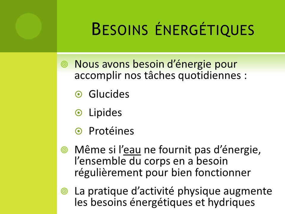 Besoins énergétiques Nous avons besoin d'énergie pour accomplir nos tâches quotidiennes : Glucides.