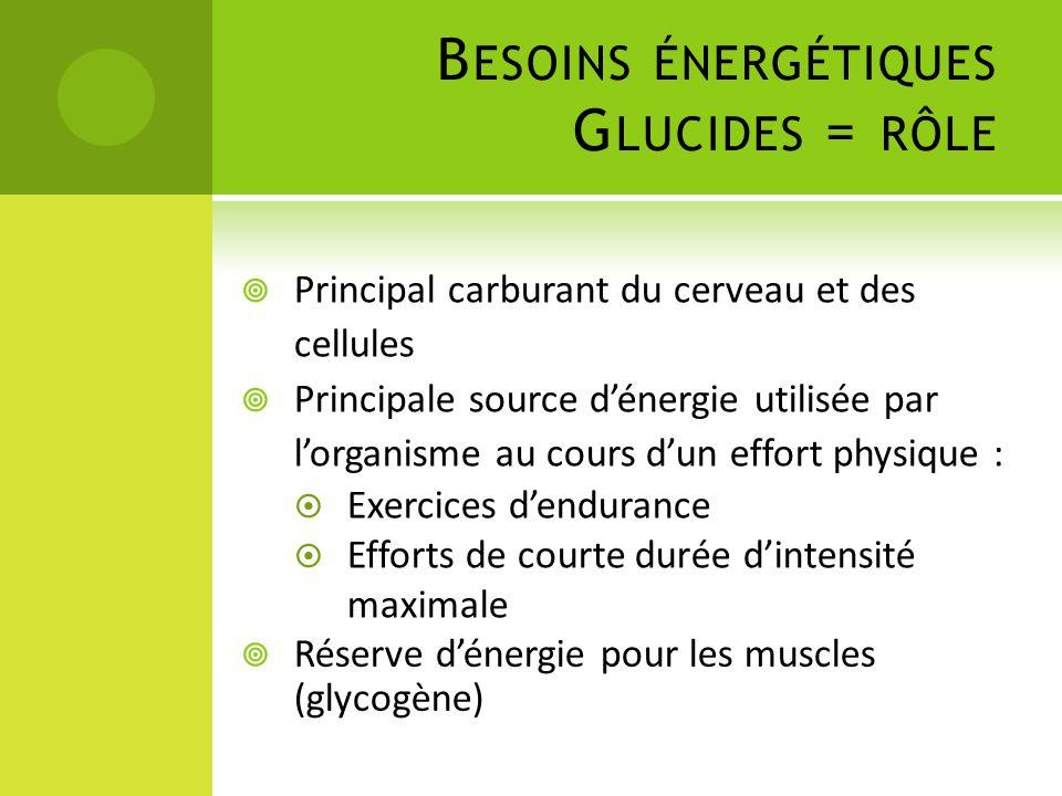 Besoins énergétiques Glucides = rôle