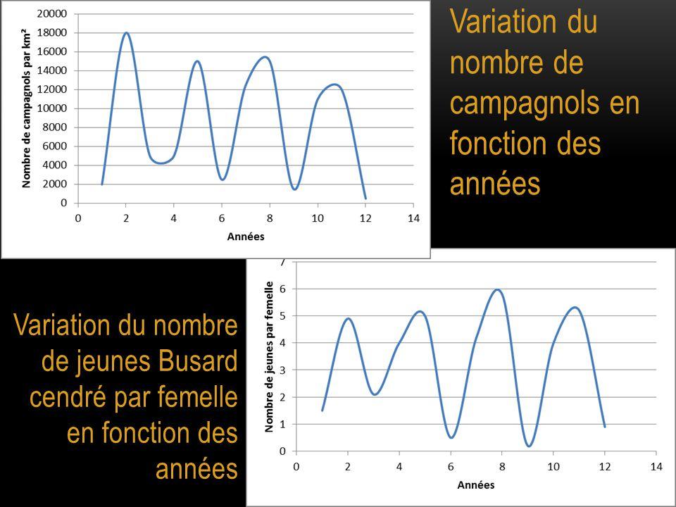 Variation du nombre de campagnols en fonction des années