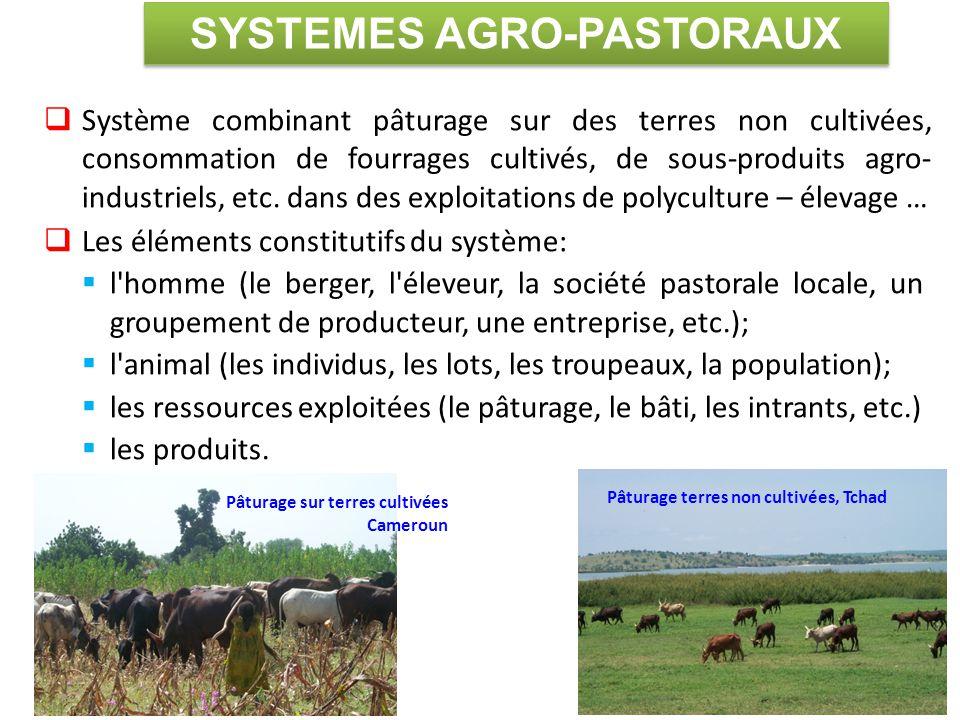 SYSTEMES AGRO-PASTORAUX