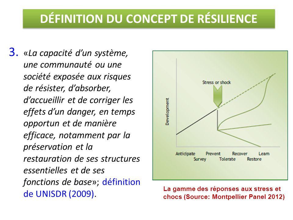 DÉFINITION DU CONCEPT DE RÉSILIENCE